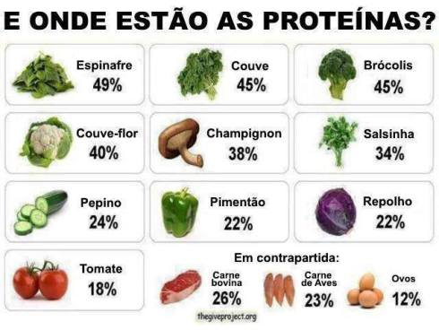 proteinas-vegetais